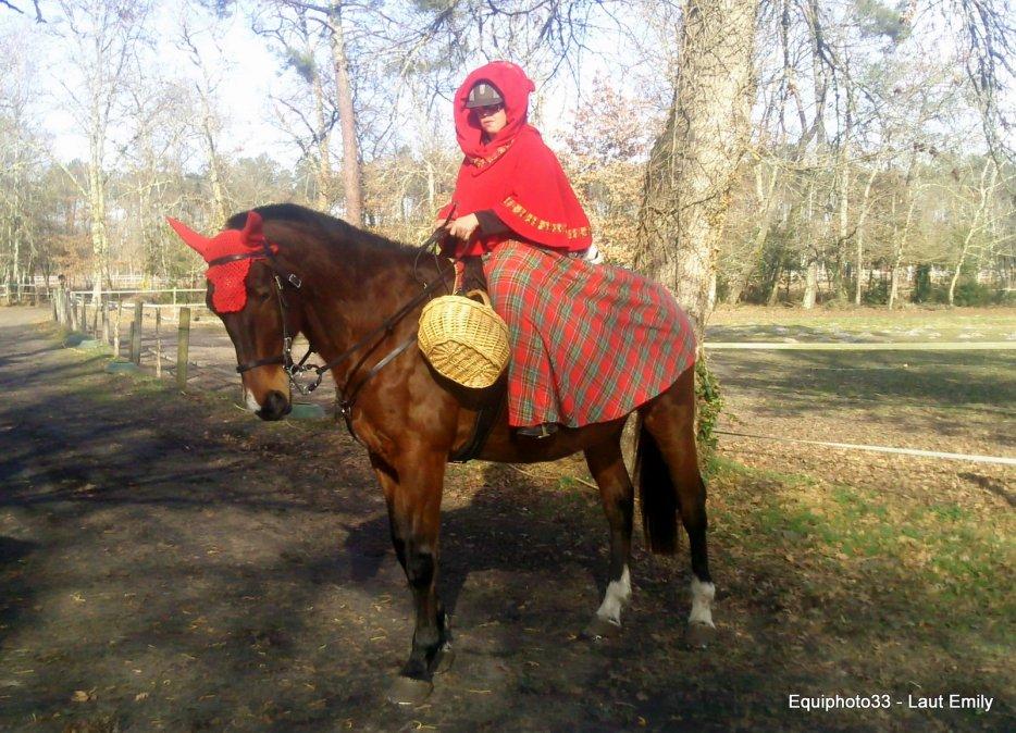 deguisement carnaval equitation