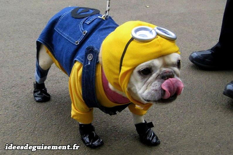 deguisement disney chien